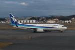 シフォンさんが、福岡空港で撮影した全日空 737-881の航空フォト(写真)