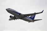 はやたいさんが、関西国際空港で撮影した全日空 737-781の航空フォト(写真)