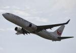 はやたいさんが、関西国際空港で撮影した日本航空 737-846の航空フォト(写真)