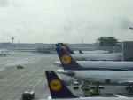 金魚さんが、フランクフルト国際空港で撮影したルフトハンザドイツ航空 A300B4-603の航空フォト(写真)