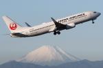 kinsanさんが、羽田空港で撮影した日本航空 737-846の航空フォト(写真)