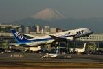 竜747さんが、羽田空港で撮影した全日空 787-881の航空フォト(写真)