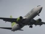 パピヨンさんが、羽田空港で撮影したソラシド エア 737-86Nの航空フォト(写真)