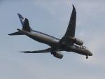 パピヨンさんが、羽田空港で撮影した全日空 787-881の航空フォト(写真)