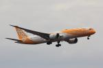 こだしさんが、成田国際空港で撮影したスクート 787-9の航空フォト(写真)