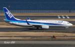 RINA-200さんが、羽田空港で撮影した全日空 737-881の航空フォト(写真)