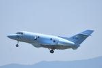 ジャコビさんが、名古屋飛行場で撮影した航空自衛隊 U-125A (BAe-125-800SM)の航空フォト(写真)