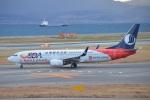 空が大好き!さんが、関西国際空港で撮影した山東航空 737-85Nの航空フォト(写真)