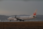 LeeFuuさんが、岡山空港で撮影した日本航空 737-846の航空フォト(写真)