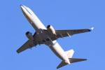 多楽さんが、成田国際空港で撮影したチャイナエアライン 737-8MAの航空フォト(写真)