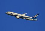 VIPERさんが、羽田空港で撮影した全日空 787-881の航空フォト(写真)