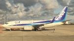 A350XWB-HNDさんが、関西国際空港で撮影した全日空 737-781の航空フォト(写真)
