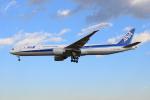 きゅうさんが、成田国際空港で撮影した全日空 777-381/ERの航空フォト(写真)