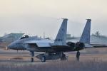 japan hayabusaさんが、岐阜基地で撮影した航空自衛隊 F-15J Eagleの航空フォト(写真)