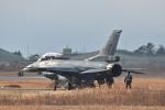japan hayabusaさんが、岐阜基地で撮影した航空自衛隊 F-2Bの航空フォト(写真)