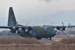 japan hayabusaさんが、岐阜基地で撮影した航空自衛隊 C-130H Herculesの航空フォト(写真)