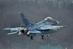 japan hayabusaさんが、岐阜基地で撮影した航空自衛隊 F-2Aの航空フォト(写真)