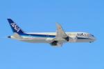 suu451さんが、伊丹空港で撮影した全日空 787-881の航空フォト(写真)