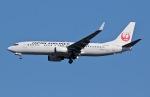 柏の子?さんが、成田国際空港で撮影した日本航空 737-846の航空フォト(写真)