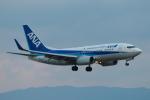 やつはしさんが、関西国際空港で撮影した全日空 737-781の航空フォト(写真)