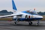 Kuuさんが、新田原基地で撮影した航空自衛隊 T-4の航空フォト(写真)
