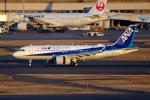 zettaishinさんが、羽田空港で撮影した全日空 A320-271Nの航空フォト(写真)