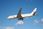hiroto0202さんが、成田国際空港で撮影した日本航空 787-846の航空フォト(写真)