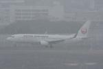 ATCITMさんが、伊丹空港で撮影した日本航空 737-846の航空フォト(写真)