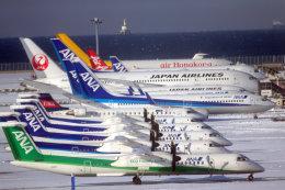 奈良ン児さんが、中部国際空港で撮影した日本航空 787-846の航空フォト(写真)