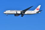 はるかのパパさんが、羽田空港で撮影した日本航空 787-846の航空フォト(写真)
