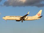 きゅうさんが、成田国際空港で撮影した日本航空 737-846の航空フォト(写真)
