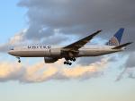 きゅうさんが、成田国際空港で撮影したユナイテッド航空 777-222/ERの航空フォト(写真)