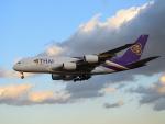 きゅうさんが、成田国際空港で撮影したタイ国際航空 A380-841の航空フォト(写真)