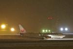 わかすぎさんが、小松空港で撮影した日本航空 737-846の航空フォト(写真)