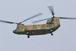 はやっち!さんが、岐阜基地で撮影した陸上自衛隊 CH-47JAの航空フォト(写真)