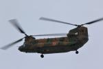 はやっち!さんが、岐阜基地で撮影した陸上自衛隊 CH-47Jの航空フォト(写真)
