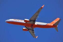 パンダさんが、成田国際空港で撮影したチェジュ航空 737-8HXの航空フォト(写真)
