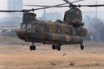 TBさんが、習志野演習場で撮影した陸上自衛隊 CH-47Jの航空フォト(写真)