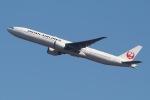 じゃがさんが、成田国際空港で撮影した日本航空 777-346/ERの航空フォト(写真)