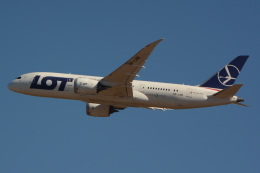 banshee02さんが、成田国際空港で撮影したLOTポーランド航空 787-85Dの航空フォト(写真)