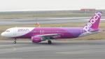 誘喜さんが、関西国際空港で撮影したピーチ A320-214の航空フォト(写真)