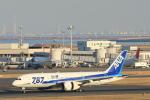 まさとしさんが、羽田空港で撮影した全日空 787-881の航空フォト(写真)