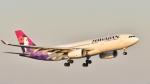 Take51さんが、関西国際空港で撮影したハワイアン航空 A330-243の航空フォト(写真)