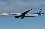 柏の子?さんが、成田国際空港で撮影した全日空 777-381/ERの航空フォト(写真)