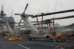 kanadeさんが、大さん橋で撮影した海上自衛隊 SH-60Jの航空フォト(写真)