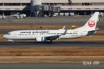 RINA-200さんが、羽田空港で撮影した日本航空 737-846の航空フォト(写真)