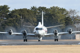 名古屋飛行場 - Nagoya Airport [NKM/RJNA]で撮影された名古屋飛行場 - Nagoya Airport [NKM/RJNA]の航空機写真