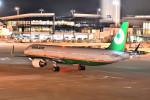 トロピカルさんが、成田国際空港で撮影したエバー航空 A321-211の航空フォト(写真)
