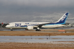 sumihan_2010さんが、伊丹空港で撮影した全日空 787-881の航空フォト(写真)