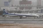 sumihan_2010さんが、伊丹空港で撮影した全日空 A321-211の航空フォト(写真)